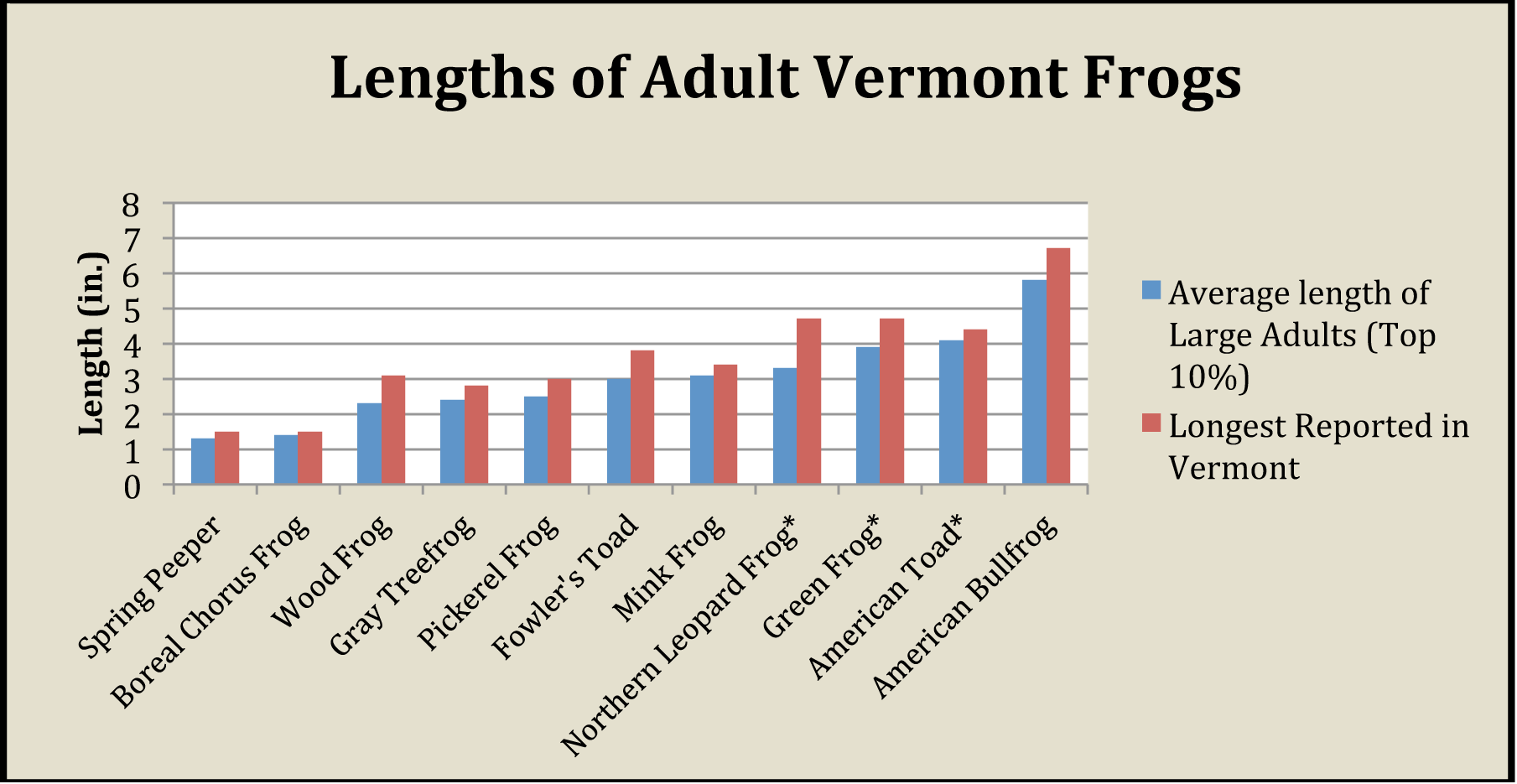 relative total lengths of vermont frogs vermont reptile and