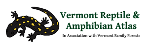 Vermont Reptile and Amphibian Atlas Logo (in Association with Vermont Family Forests). Depicting a Spotted Salamander.