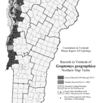 Records in Vermont of Graptemys geographica (Northern Map Turtle)