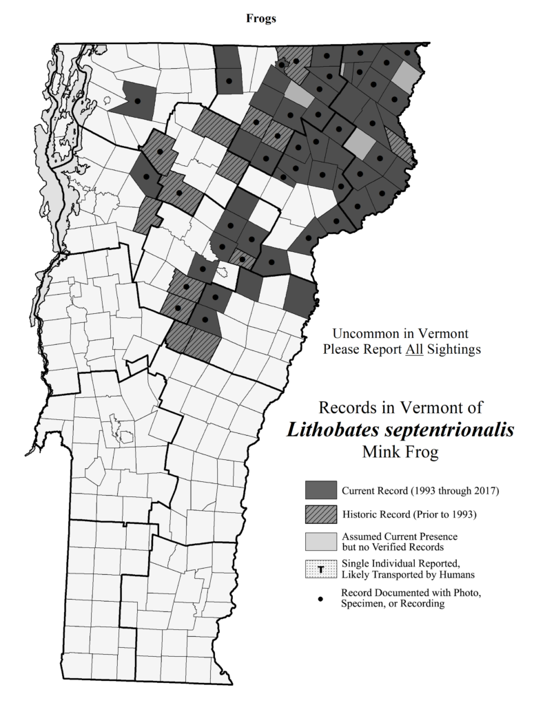 Records in Vermont of Lithobates septentrionalis (Mink Frog)