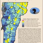 reports per town gray